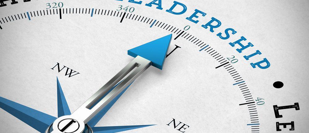 Energy Leadership Development System